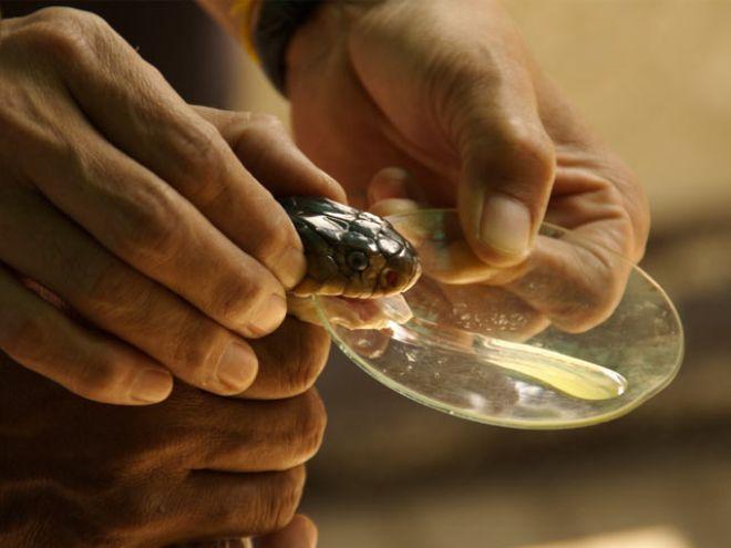 Инструкция газовой плиты омичка