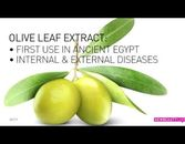 Ingredient Spotlight: Olive Leaf Extract