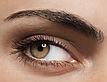 C:\fakepath\SECRETS TO SCULPTED BROWS
